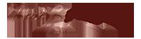 Bori Bojthe Photography Logo
